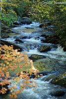 Smoky Mountains Stream by poetcrystaldawn