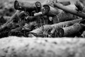 Wood Pile by Defiant-Retribution
