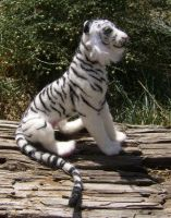 White Tiger Wooliture by RoseThistleArtworks