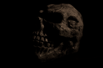 Skull Prop by ExEffect