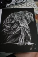 Aseel Scratchboard by LyrebirdJacki