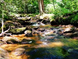 Creek Along The Appalacian Trail 05 by TemariAtaje