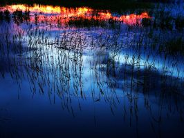 Blue Reflection by holymacro