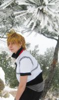 Roxas: Follow Me by pixiedustling