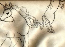 the last unicorn by Immadicus