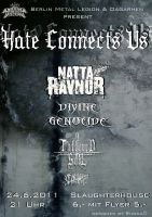 Hate Connects Us Flyer by Lirhlu