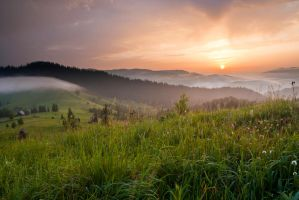 Early in the Bukovina by lica20