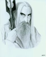 Saruman the White wizard by mattleese87