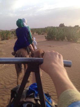 Camel ride by JackOlleyPhotography
