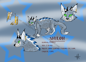 Shiloh ref by xDeadpuffx