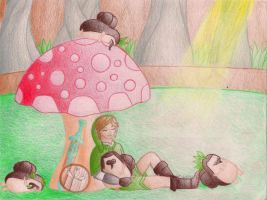 Link and Some Kikwis: Do Not Disturb by HyruleandHogwarts