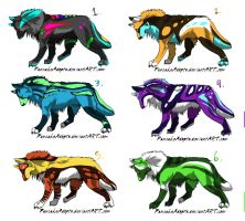 Colorful wolf point adopts by DiscoDogg