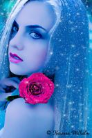 THE ROSE by KerensaW