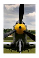 P-39 AIRACOBRA by ScarredWolfphoto