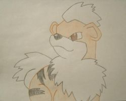 Growlie the Growlithe by xXJustBelieveInMeXx