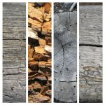 Wood Texture Pack by mechex9