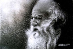 Moses by Vladimir12908