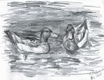 Ducks by TigaLioness