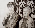 Sherlock and John - April 21 by Teacosey