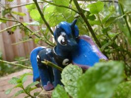 Small Luna Playing Hide And Seek by SakuraSculpture