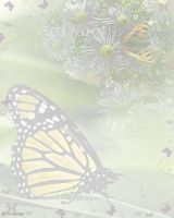 butterfly stationery by Twitchy-Kitty-Studio