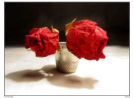 Small roses by firework