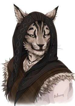 Commission for Kapu the Khajiit Skyrim FanArt by Arkuny