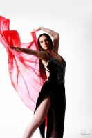 Belly Dancer Veil Stock 09 by LoryenZeytin