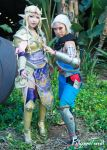 AX15 - Hyrule by BlizzardTerrak