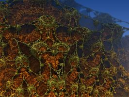 Outer Webbing by AureliusCat