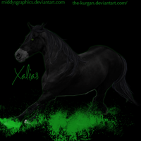 XALIAS by MiddysGraphics
