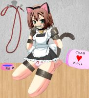 Cat-Maid Hideyoshi by Psycho008