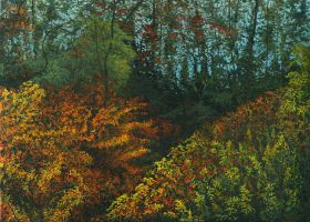 Colorful Alluring Thickets by AldemButcher