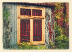 window by awjay