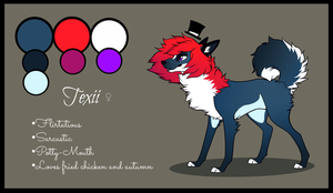 Texii :revamped refsheet: by Sutexii