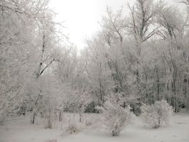 Frost Stock 3 by MGB-Stock