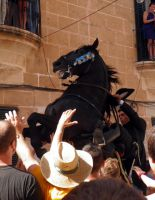 sant joan 2011 2 by EmberRoseArt