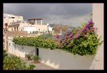Stormy Friday In Ibiza by skarzynscy