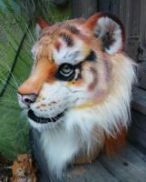 golden tiger headshot by LilleahWest