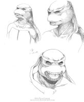 Turtles sketches by mreviver