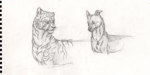 [Dog and tiger] by houlenp