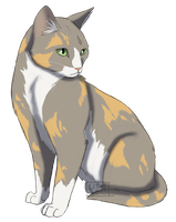 Graypaw oc by Lithestep
