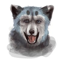 Wolf thing by DaggarHeart