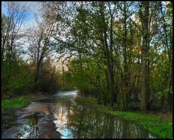 River Road by bamako