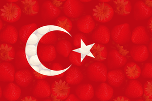 Turkey Flag by Gelbaxa