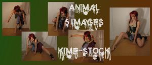 Animal 6 by kime-stock