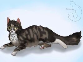 Maine Coon by Lilinera