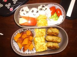 Bento lunch by Michi-Mii