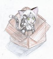 Kitty in a box by MisakiChi123