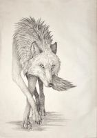 Lone Wolf Art Bag by ShiVira